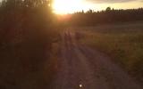 tabor-farnost-secovce-04